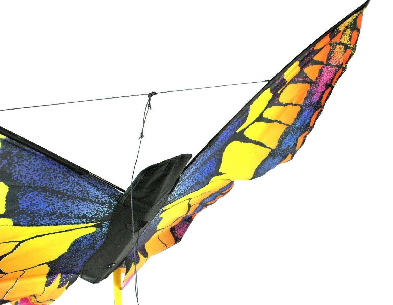 Swallowtail bei Drachen-Lenkdrachen